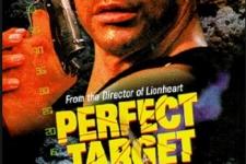 Perfect-Target_01